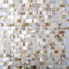 TST Freshwater Shell Slice Tiles Mother Of Pearl Tiles Squared Bath Background Shell Wall Mosaic Art
