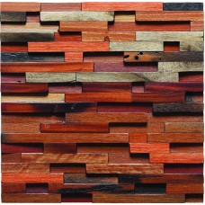 TST Irregular Tiles Mosaic Tiles Wall Designed Aesthetic Red Backsplash Tile